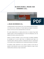 Informe de Visita Técnica - Molino San Fernando
