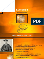 Evolução III