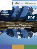 Prospecto_Puno