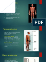 Planimetria y Términos