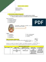 sindromes vestibulares