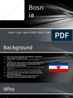Bosnia Project