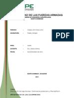 Documento exposición siratro.docx