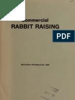 Commercial Rabbit Raising Rich