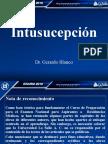 5.-guia_grafica_intu_20239.ppt