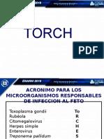 Guia Grafica Torch 20228