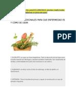 15 PLANTAS MEDICINALES Y PARA QUE SIRVEN.docx