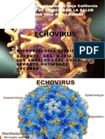 ECHOVIRUS.pptx