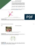 Macam-macam Penyerbukan Pada Bunga.pdf