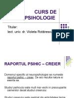 Curs Neuropsihologie 2008 2009
