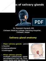 tumors of salivary gland.ppt