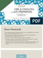 Anatomi & Fisiologi Sinus Paranasalis Review