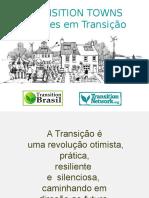 Transition Talk | Isabela Maria Gomez de Menezes | Transition Brasil | Instituto IBEST