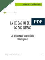 14.BetaOxid.pdf