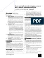 DECLARACIONES Y PAGOS.pdf