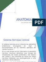 Anatomia Humana II by Armando Ortiz