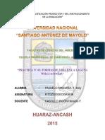 informe de WILCACOCHAA.pdf