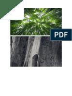 Patologia Estructural Edificacion de 5 pisos.docx