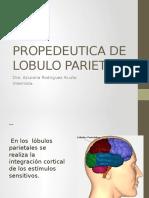Prope Lobulo Parietal 2016