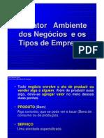 1._Tipos_de_Empresas_e_o_Mundo_dos_Negocios