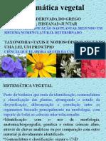 Sistemática Introd. (1)