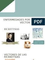 Enfermedades Por Vector
