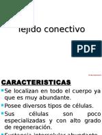 2. CONECTIVO 2013