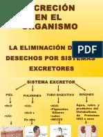 54297_anexo1-1°RIÑON.ppt
