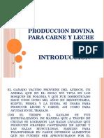 Produccion bovina INTRODUCCION