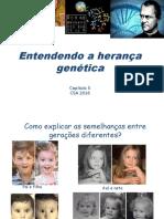 Genética (1).ppt