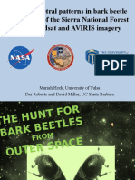 Finding Spectral Patterns in Bark Beetle Infestations of the Sierra National Forest using Landsat and AVIRIS Imagery