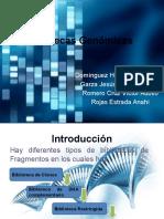 bibliotecasgenmicasbma-130224015102-phpapp01