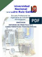 INFORME CATA DE VINOS - ENOLOGÍA.docx