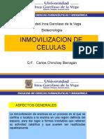 INMOVILIZACION-CELULAS
