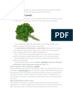 El Perejil Es Uno de Los Vegetales Con Más Propiedades Antioxidantes