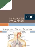 Fisiologi & Patofisiologi Sistem Pernapasan