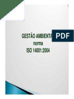 NBR 14001-2004