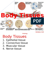 ANA_ZOO_body_TISSUES_copy.pptx
