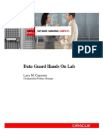 dg-hands-on-lab-427721.pdf