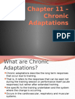 chapter 11  chronic adaptations