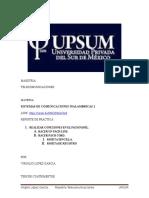 Reporte de Practica PachapanelVLG