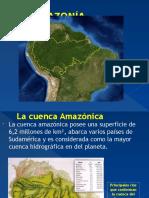 An Tart i Day Amazonia