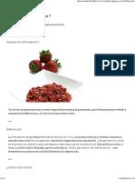 Liofilizacion.pdf