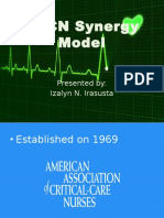 AACN Synergy Model