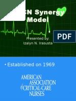 AACN Synergy Model