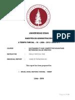Report-Case of Patagonia