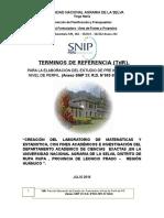 TdR Creación e Implementación Del Laboratorio de de Simulacón Mat y Estadistica Con Fines Academicos e Investigación
