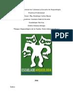 Monografía de La Practica Profesional