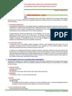 DISEÑO GEOMETRICO HUALLAY CASA.doc