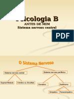 Cérebro-1